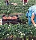 Trabajadores (Foto: Moncloa)