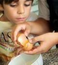 Niños cocineros (Foto: tallerdulcejuanita.com)