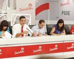 Pedro Sánchez en la Ejecutiva de PSOE (Foto Flickr PSOE)Pedro Sánchez en la Ejecutiva de PSOE (Foto Flickr PSOE)